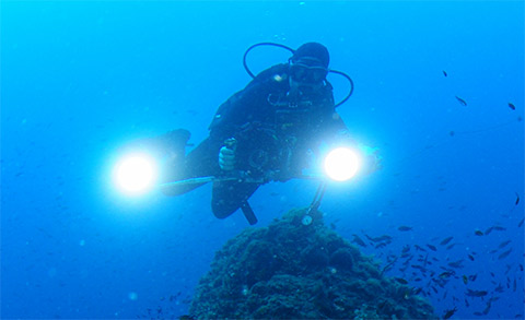padi specialty underwater photography